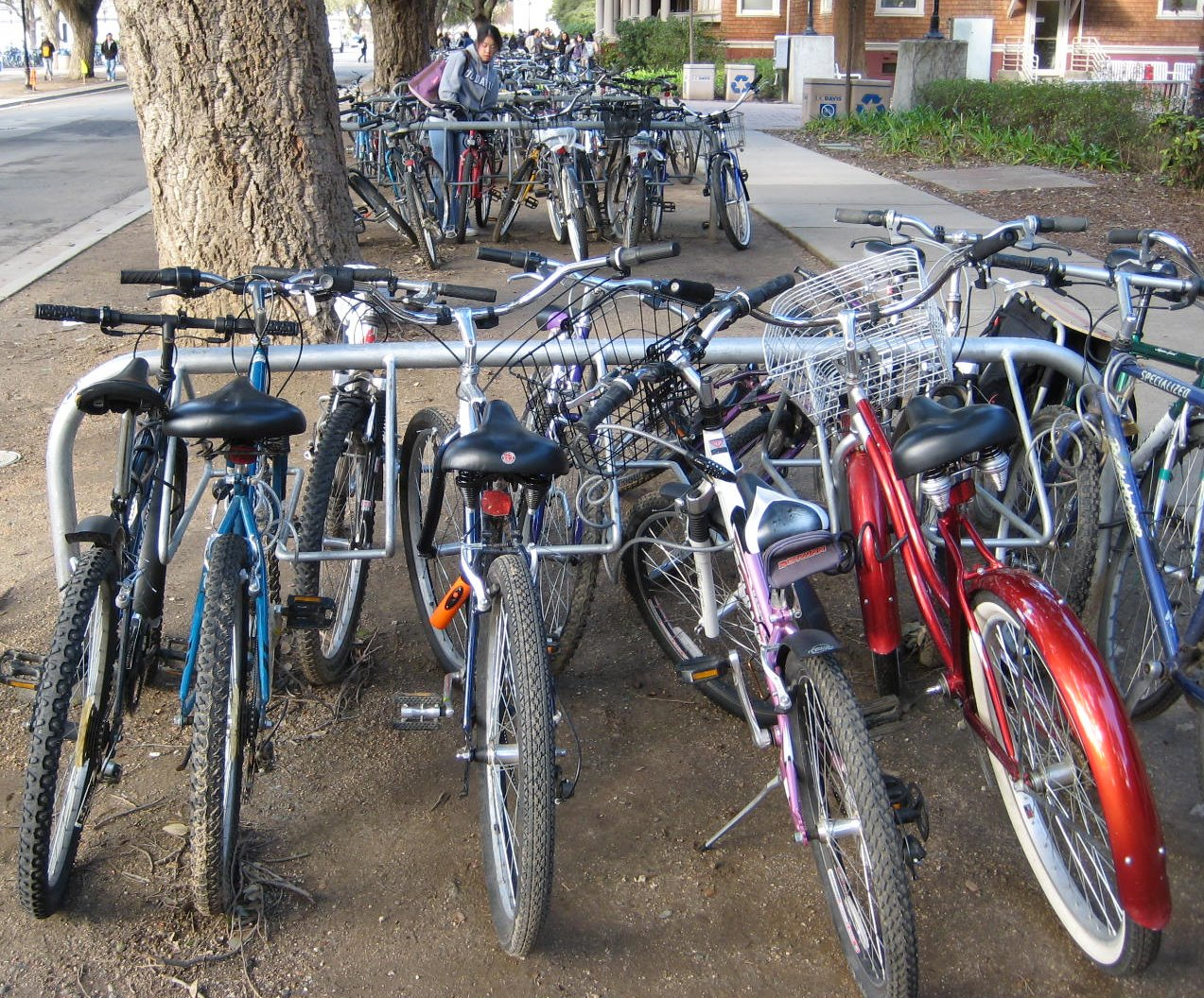 Bikes Uc Davis the UC Davis campus