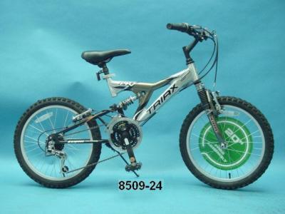 Dynacraft Bicycle Recall Biking Bis