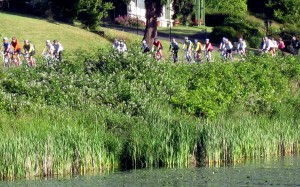 STP cyclists rolling along Lake Washington in 2011.