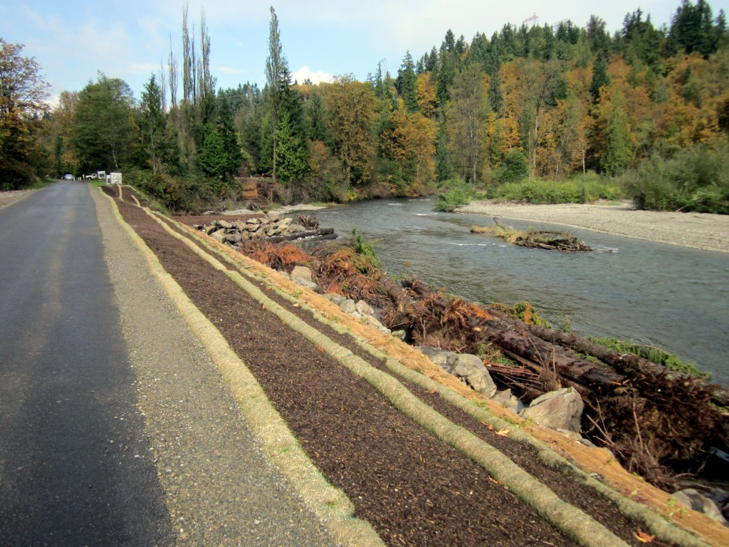 New shoreline on Cedar River