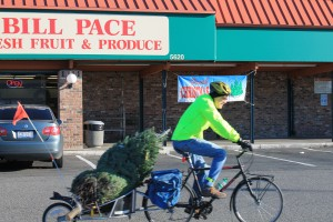 Rolling past Bill Pace market with my Christmas tree