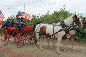 Tom Short at the reins of a wagon