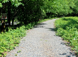 Whitehorse Trail covered in ballast. Sign at left warns that trail is undeveloped and hazards exist