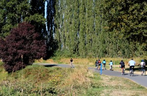 Sammamish River Trail