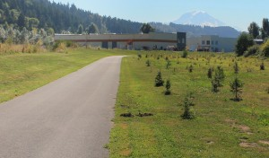 Mount Rainier can be seen behind industrial park on Sumner Link Trail