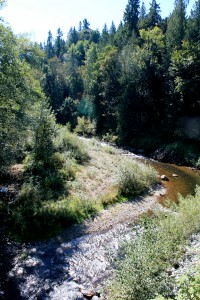 View of Wilkeson (South Prairie) Creek from bridge