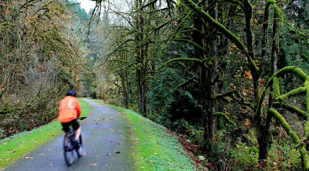 A cyclist heads down Preston-Snoqualmie Trail