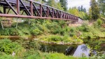 A new bridge over Chehalis River, courtesy Discover Lewis County