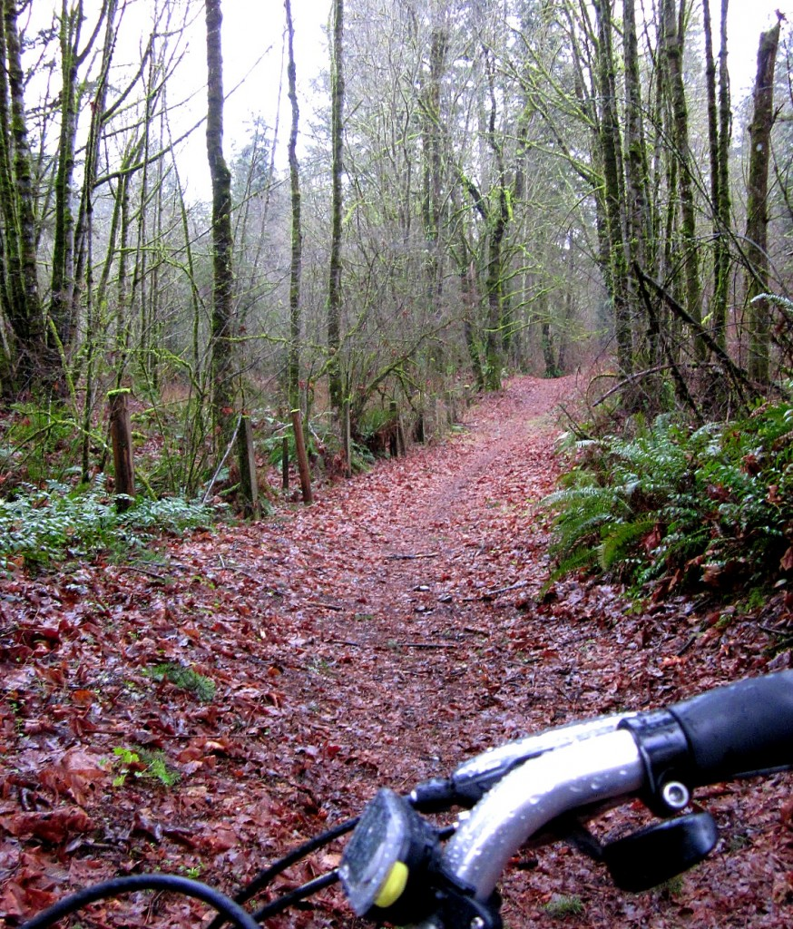 Highlands Trail in Newcastle