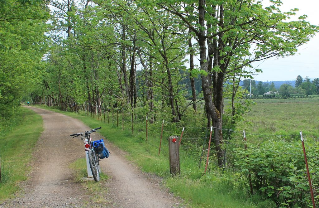 A scene on Snoqualmie Valley Trail heading south