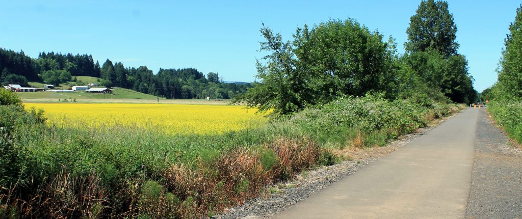 Willapa Hills Trail passes through rich agricultural land